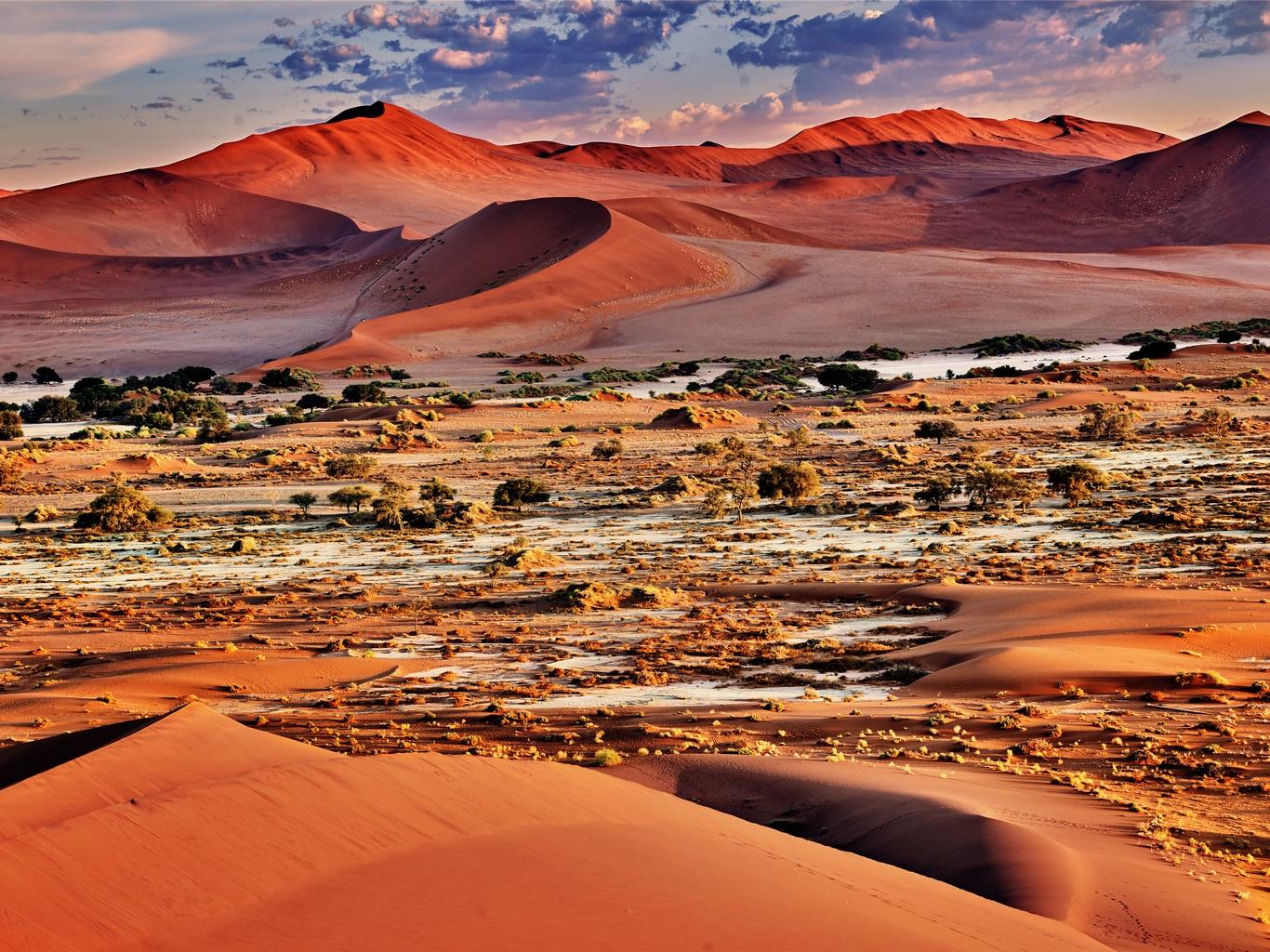 Circuit Safaris & Dunes - 1